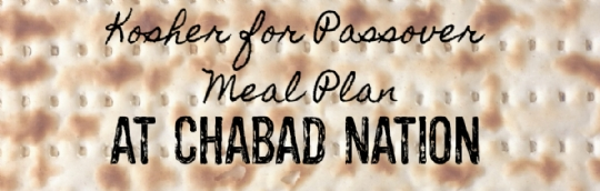 PassoverMealPlanWebBanner.jpg