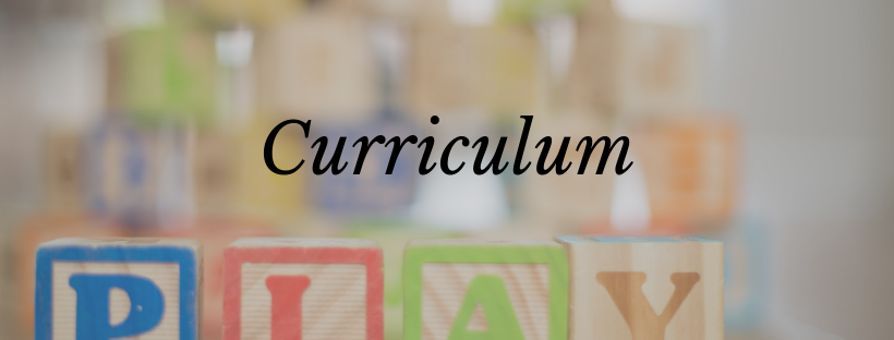 Curriculum (1).png