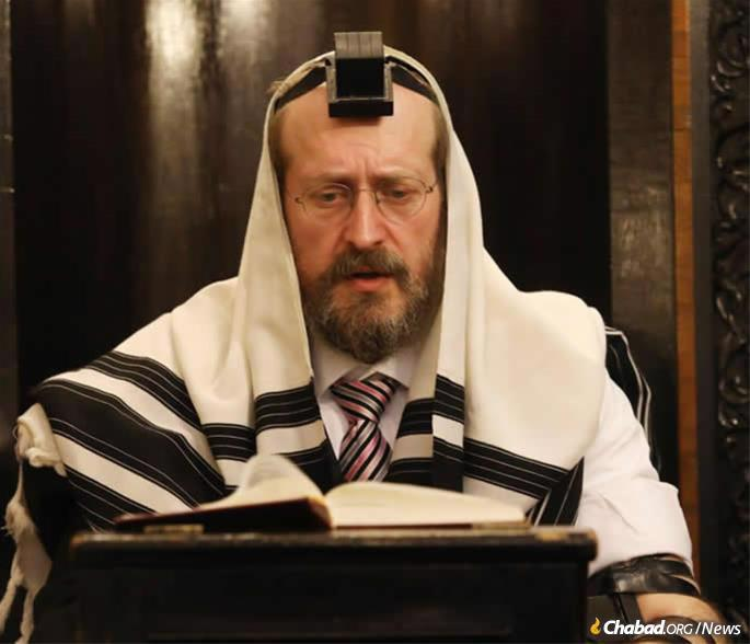 Rabbi Mendy Chitrik