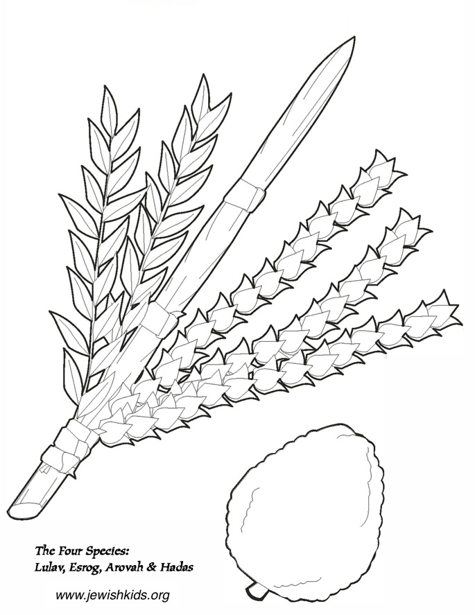Sukkos Coloring Pages - Crafts & Coloring Pages - Jewish Kids