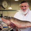 Berel Raskin, 84, Chassidic Fishmonger Who Became a Crown Heights Icon