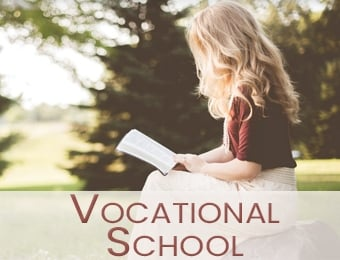 Vovational School Button 340x260.jpg