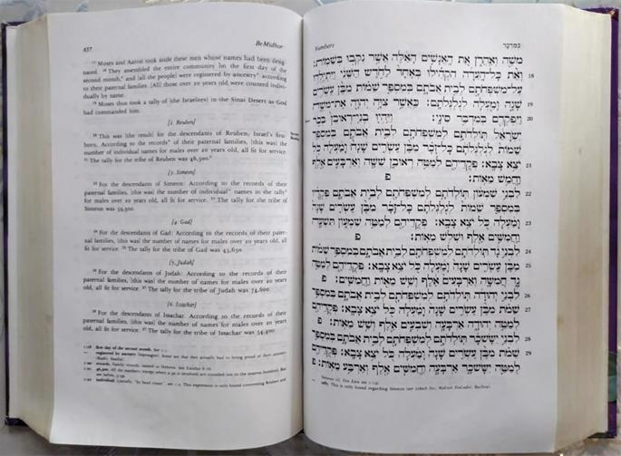 The Living Torah provides a translation that is accessible to the beginner and enlightening to the accomplished scholar.