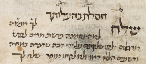 MS. Michael 384, fol. 102 Shlach.png
