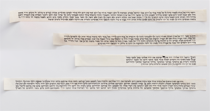 The four handwritten parchment scrolls, soon to be placed in a high-quality head tefillin. (Credit: Rabbi Yosef Y. Rabin, Craft Sofer)