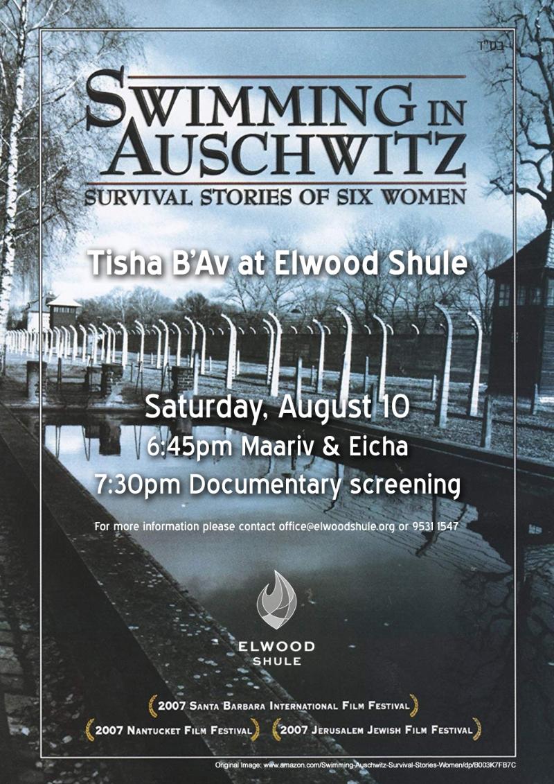 Swimming in Auschwitz.jpg