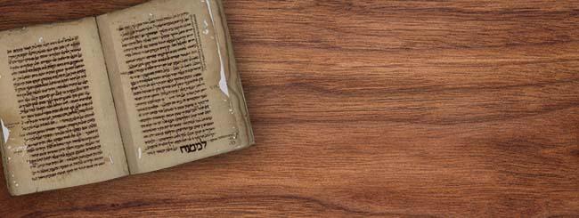 Parashá: Seleções do Midrash