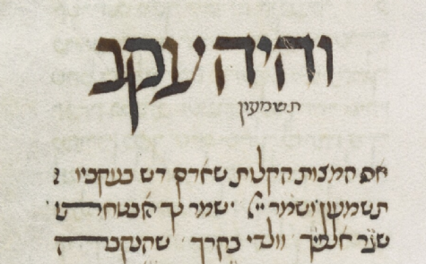 MS. Canon. Or. 81, fol. 165 (1396) Ekev.png
