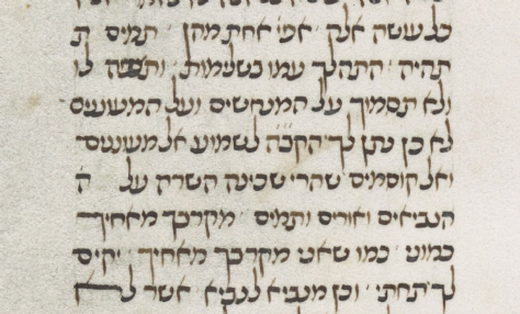 MS. Canon. Or. 81, Fol. 173 (1396) Shoftim.png