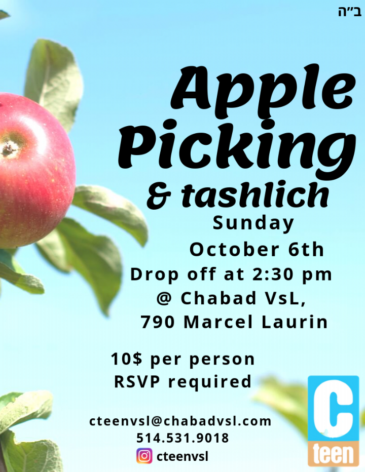 CTeen Apple Picking.png