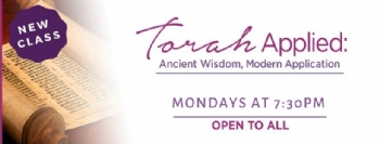 Weekly Torah Classes on Zoom