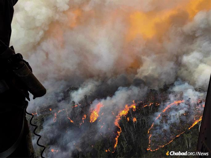 Over 21 million acres—roughly the size of Maine—have been burned, with 25 lives lost and several missing, and almost 2,000 homes destroyed. An estimated half-billion animals have been killed, pushing some of Australia's unique and already endangered species further toward the brink of extinction. (Photo: CPOA Brett Kennedy/Commonwealth of Australia)