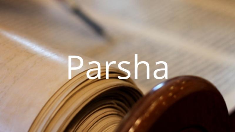 Parsha button.jpg