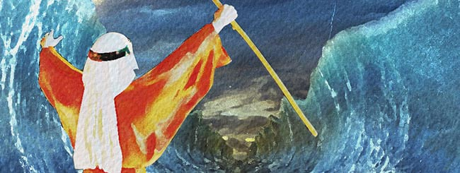 Torah Insights: Why the Sea Needed to Split