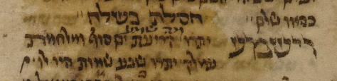 MS. Oppenheim 35, fol. 40 (1408).png
