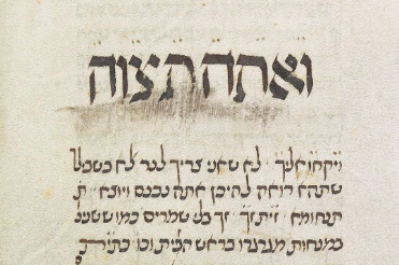 MS. Canon. Or. 81, Fol. 82 (1396) Tetzaveh.png