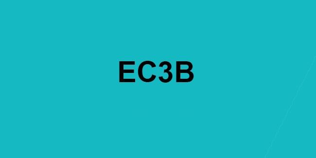 EC3B.jpg