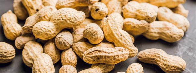 Jewish Holidays: Are Peanuts Kosher for Passover?