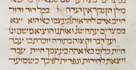 MS. Pococke 307, fol. 179 (1301-1400).png