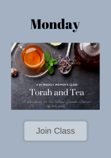 Copy of passover class.png