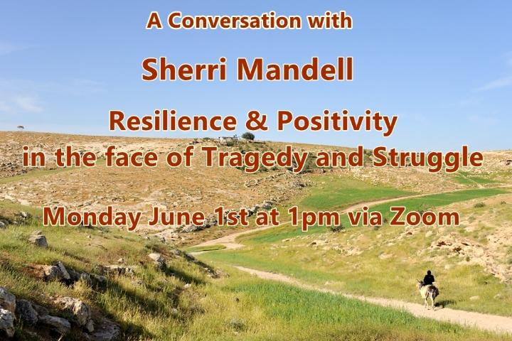 Sherri Mandell Speaking.jpg