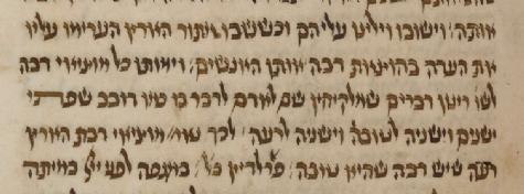MS. Oppenheim 35, fol. 81 (1408) Shelach.png