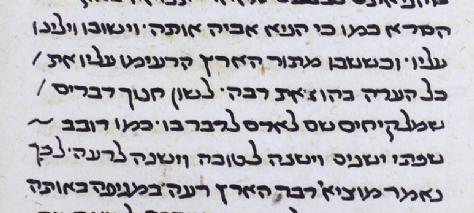 MS. Huntington 389 (1301-1400) Shelach.png