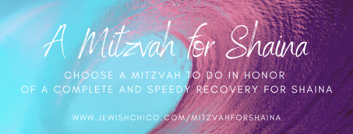 A Mitzvah for Shaina (1).png