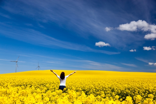 Canva - Happy Young Woman on Spring Field.jpg
