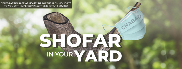 Shofar in your Yard for website.png