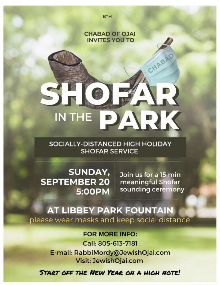 Copy of Shofar in the Park - Flyer.png