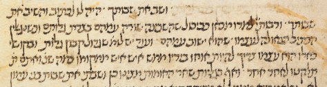 MS. Canonici Or. 35 (Nitzavim).png