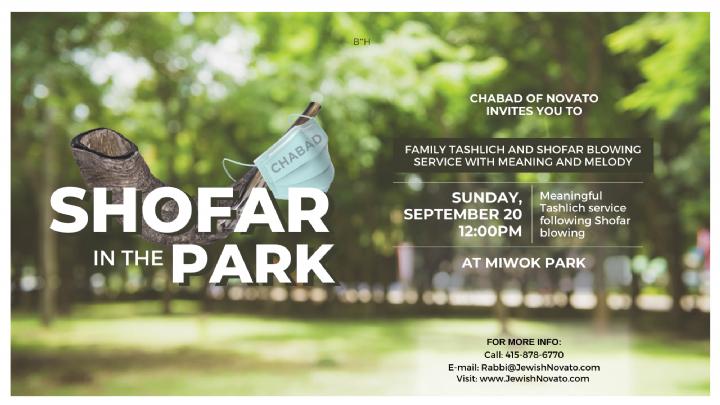 Shofar in the park facebook banner.png