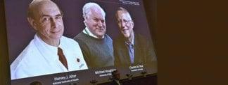 Cientista judeu ganha Nobel de Medicina pela descoberta do vírus da hepatite C
