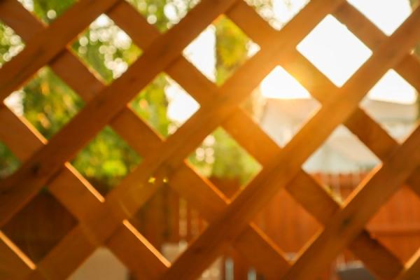 Sukkah Fence.jpg