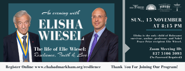 CHABAD RESILIENCE SERIES - Wiesel Banner.png