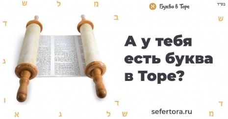 8796e3c2-adc2-443d-b4df-72ee4ecde8dc.jpg