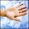 Solteros en el Cielo