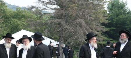 Rabbi Eli Landa, left, one of the heads of the central yeshiva in Kfar Chabad, Israel, discusses a Jewish legal matter with Rabbi Moshe Havlin, chief rabbi of Kiryat Gat, Israel, and Philadelphia Chief Rabbi Dov Brisman; while Rabbi Yitzchak Hertz, dean of the central Chabad-Lubavitch yeshiva in London and famed New York author and halachic decisor Rabbi Gavriel Zinner converse at the Global Yarchei Kallah convention in Parksville, N.Y. Photo Eli Kahn
