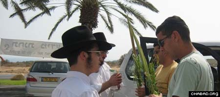 Israelis make a blessing over the lulav