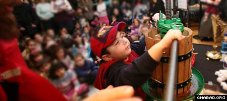 A young Macy's shopper gets his chance to press some olives during a Chanukah workshop run by the Jewish Children's Museum. (Photos: Benjamin Lifshitz)