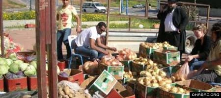 Volunteers assist Chabad-Lubavitch of Sderot, Israel with a food distribution last year.
