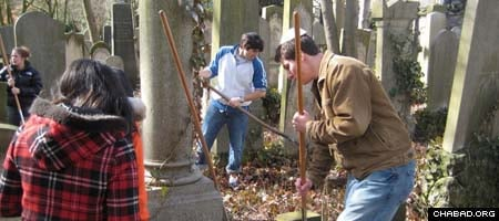 Students from the University of Illinois at Urbana-Champaign help clean up a Berlin Jewish cemetery.
