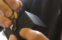 4. A l'aide d'un cutter, les restes des tendons qui ont fermé le boîtier sont enlevés.