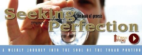 SeekingPerfection-TS_Chabadorg.jpg