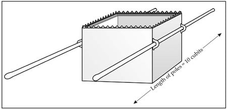 Figure 3: The rings and poles of the Ark