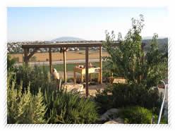 Kibbutz View