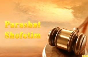 Torah Portion: Shofetim
