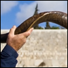 Why do we blow the shofar so many times?