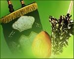 Sukkot & Simchat Torah